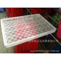 供应白色塑料网格方盘 晒盘 耐高温冷冻周转托盘 单冻烘烤风干盘