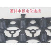 安徽抗渗排水板-焊接式塑料排水层-型号