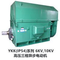 供应优质北京东方华盛高压三相异步电动机YKK5004-6 10KV 630KW IP44
