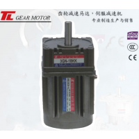 厦门东历电机4RK25GN-A+4GN-75KK单相异步电动机4级微型电机