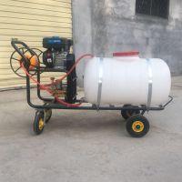 多喷头高压打药机 农田除虫汽油推车喷雾器 园林绿化高压喷雾器