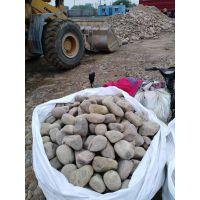 变压器鹅卵石 污水处理鹅卵石 5-8公分