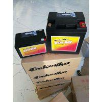 德国尼克蓄电池NCP100-12经销商价格\产地是哪里