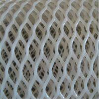 养殖塑料网 雏鸡养殖网 养虾白网