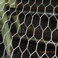 厂家专业生产不锈钢六角网 不锈钢拧花网 规格齐全 保证质量