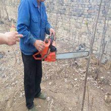 采伐更新快挖树机 保护树木根系的铲树机
