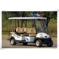 6座电动巡逻车/A1P4+23500*1200*1900mm