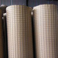厂家批发热镀锌电焊网养殖钢丝网防护铁丝网防鼠养水貂