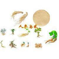 人参茎叶提取物 人参茎叶总皂甙 80% UV