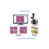 依视显微镜软件 兼容显微镜相机 扫描实时拼接 景深拓展