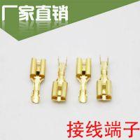 6.3插簧端子  铜接插件插片母头插拔式冷压接线端子厚6.3插簧批发