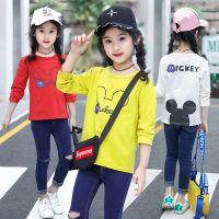 2018贵州哪里有便宜童装长袖T恤衫批发纯棉时尚童装尾货服装批发市场