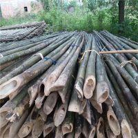 供应2米-9米小山竹 园林苗圃 绿化工程 造地工程用的小竹竿批发