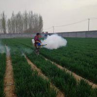 高效弥雾机 不伤果打药机 农用烟雾机 启动教程