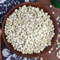 小薏米批发 五谷杂粮薏仁米红豆薏米粥 贵州小薏米散装新货苡仁