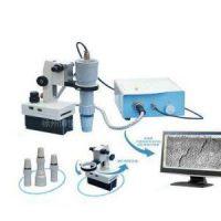 番禺W903D数码显微镜W1303D立体数码显微镜哪家专业