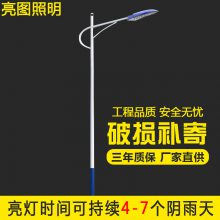 250w双臂路灯路灯杆生产厂家自弯臂8米路灯杆球场灯杆12米路灯杆