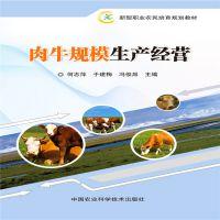 农业养殖:肉牛规模生产经营作者:何志萍 于建梅 冯俊昌