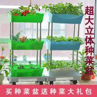 阳台种菜盆立体种植架家庭长方形种植盆大号塑料花架蔬菜盆花盆
