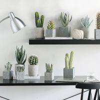 创意北欧家居装饰品多肉仙人掌仿真植物盆栽摆件假花绿植室内摆设