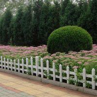 别墅草坪防护栏 PVC花坛隔离栏杆 小区护栏
