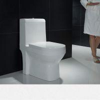 地面安装白色陶瓷双按卫浴连体卫生间马桶座便器