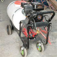 鸿睿 手推26型柱塞泵打药机 手推式果园苗圃喷雾器图片