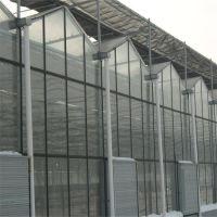观光农业玻璃大棚 养殖种植大棚建造报价 供应智能温室材料