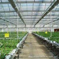包工包料新建热浸锌热镀锌带钢管连体单栋农业温室钢管大棚