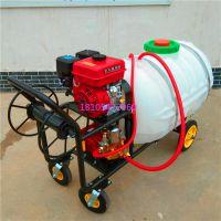 手推车杀虫打药机农用小型手推式打药机也可配柴油动力