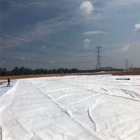 山东两布一膜英文Two cloth one film是土工织物与土工膜复合而成的不透水材料。