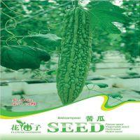 批发蔬菜瓜果种子绿皮 苦瓜种子6粒一包  量大按斤批发