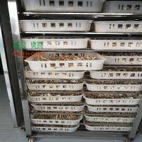 集中了五大优点白玉菇烘干设备非同凡响