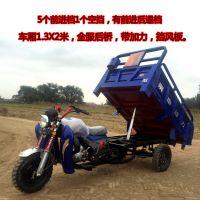 燃油货运三轮摩托车175液压自卸翻斗汽油三轮摩托货车 带爬坡档