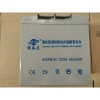 诺泰克12V24AH蓄电池 诺泰克6-GFM-24 / 12V24AH 铅酸蓄电池