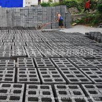 厂家直销 二孔砖 墙体砖 多孔砖 水泥砖 小型水泥砌块 砌墙砖头