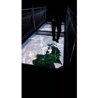 河南LED显示屏玻璃栈道屏厂家直销
