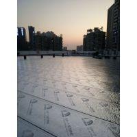 南站钢结构彩钢瓦屋顶防锈防水工程;惠州专业防水补漏堵漏公司