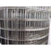 吊顶彩钢屋顶钢丝网 采用镀锌钢丝不锈钢丝 安平环航网业