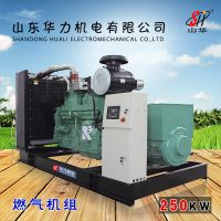 250KW燃气柴油发电机组 厂家直销 山东华力机电