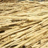 (厂家)木材剥皮机价格-木材剥皮机视频-木材剥皮机参数