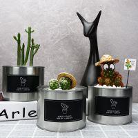 多肉植物花卉盆栽套餐北室内简约金属罐绿植办公桌摆件欧风植物
