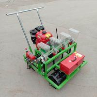 LQ-BZJ6行蔬菜播种机 广东菜心播种机价格 有机蔬菜种植机设备鲁强机械