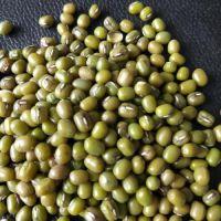 青岛绿豆进口代理报关的一般流程