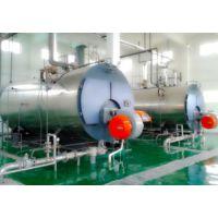 生物质锅炉厂家 超懒WNS0.5热水