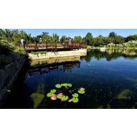 景观水体生态修复公司