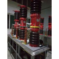 阜新ZW7电站型真空断路器产品说明书
