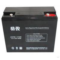 岳阳蓄电池厂家6GFM100骆俊蓄电池