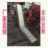 宁津卓远厂家生产食品提升机速冻水饺白色提升机裙边式自动化设备