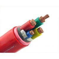 德胜YGC22硅橡胶绝缘硅橡胶护套钢带铠装电力电缆2*95mm2口碑商家